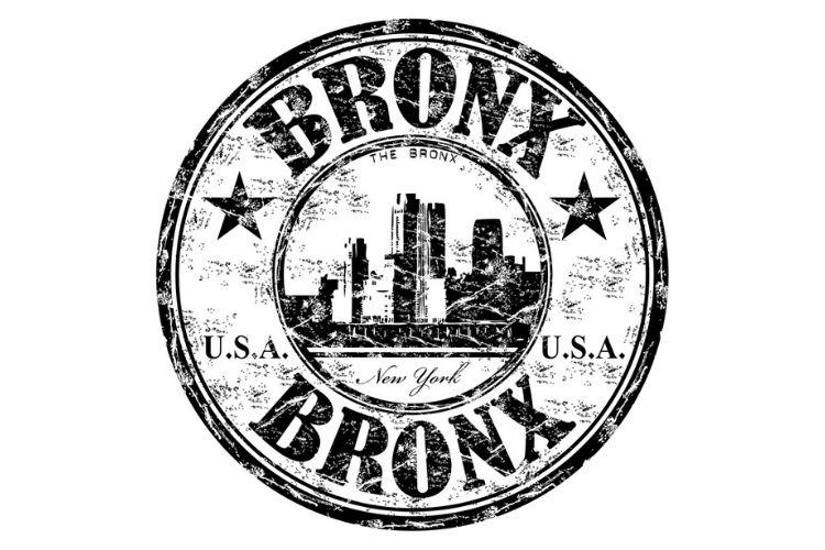 the bronx text